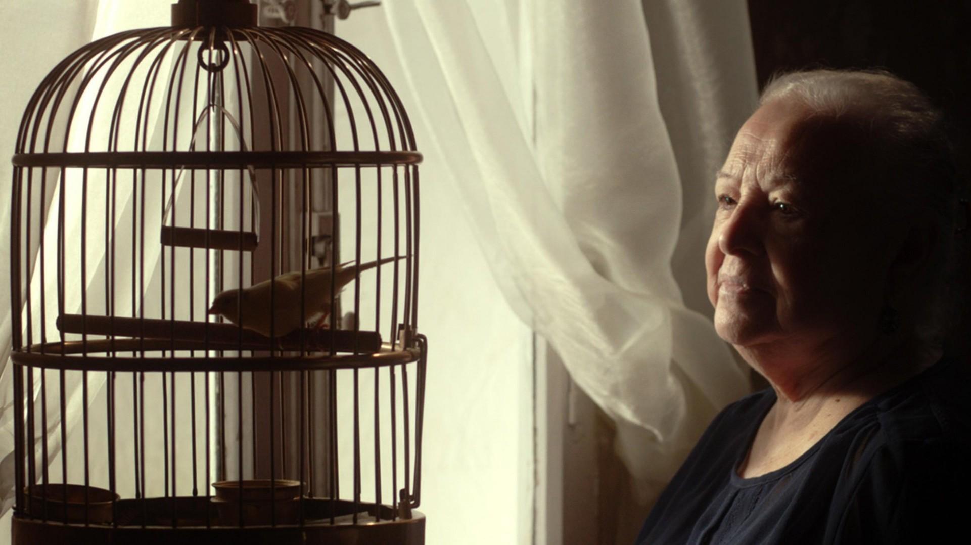 """Cinque Continenti Film Festival 2015: vince il Il cortometraggio """"Teatro"""""""